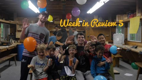WEEK IN REVIEW #5 2019